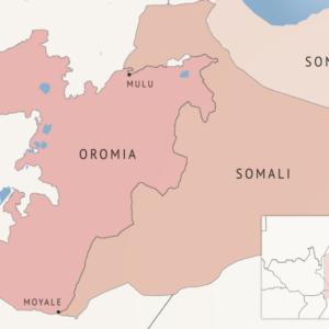 Abdi Mohamoud Omar Archives - Ethiopia Observer