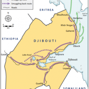 Violent attack on Ethiopian nationals in Djibouti