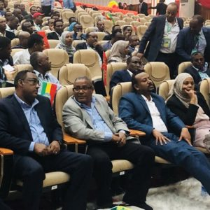 Where to Be, on the Right or Left of Abiy? That Is the Question