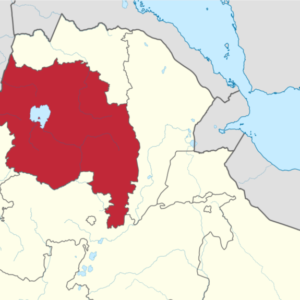 Ethiopians flee to Sudan after ethnic based attack