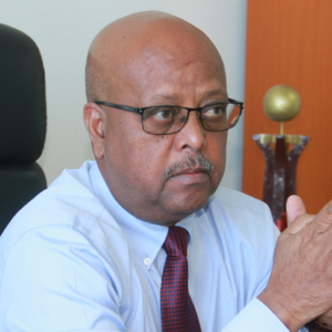 'Ethiopia is in transition defined by no clear direction': Tsadkan Gebretensae