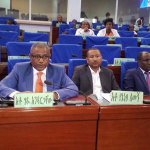 Gedu Andargachew resigns;  replaced by Ambachew Mekonen
