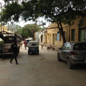 Almost two years after relocation, makeshift dwellers struggle in Dire Dawa